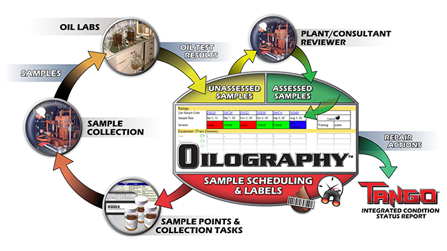 Oilography Graphic